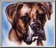 Custom airbrushed dogs