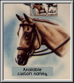 Custom airbrushed horses