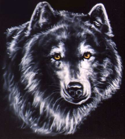 Wolf on black t-shirt